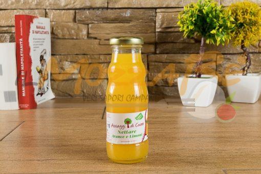 Nettare arance e limoni - Assaggi di Cuore